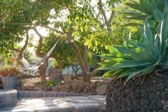 Garten mit Hängematte